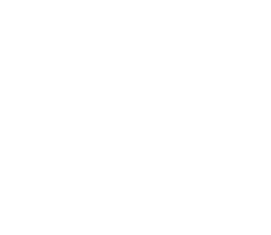 Best and Brightest 2020